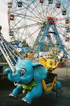 elephants at Coney Island fairground