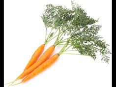 Huile essentielle de carotte en vidéo : Mes recettes