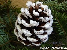 White paint, mod podge then epsom salts. Would look great if the pinecone was spray painted gold first also before flocking.