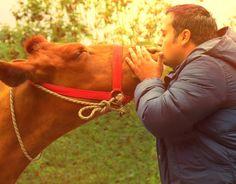 El majestuoso amor por los animales