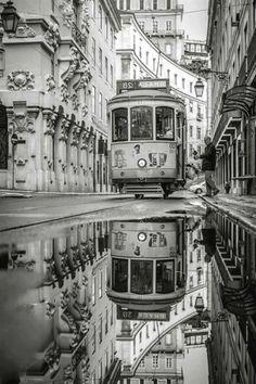 Reglas para lograr una bella  Fotografía en Blanco y Negro. Blanco y Negro:Rosas Fuente: archzine.fr/...