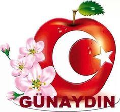 Türk bayraklı günaydın mesajı Christmas Bulbs, Animation, Holiday Decor, Instagram, Emoji, Allah, Roses, Hearts, Christmas Light Bulbs