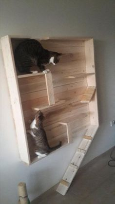 diy  pallet cat wall hanging playhouse