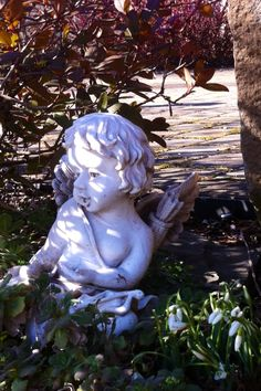 Cupid is enjoying the serene garden, and our first flowers, Snowdrops, Galanthus!