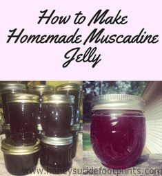 How to Make Muscadine Jelly - Honeysuckle Footprints - Amazing Foods Menu Recipes Muscadine Recipe, Muscadine Jelly, Muscadine Vine, Pepper Jelly Recipes, Grape Recipes, Jam Recipes, Canning Recipes, Fruit Recipes, French Nails