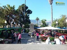 Farmers markets in Gran Canaria offer you many local fruits and vegetables - even exotic ones.