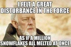 I felt a great disturbance in the force, as if a million snowflakes all melted at once.