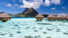 Garden Pool, Tropical Garden, Bora Bora Hotels, Pearl Beach Resort, Society Islands, Tourism Marketing, Overwater Bungalows, Plunge Pool, Private Garden