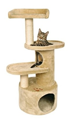 1000 images about cat perch on pinterest cat perch cat. Black Bedroom Furniture Sets. Home Design Ideas