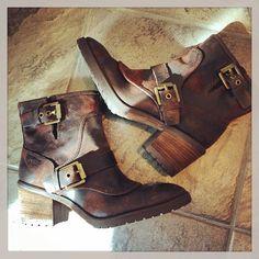 #donaldpliner #delta @donaldjpliner Biker, Boots, Fashion, Crotch Boots, Moda, La Mode, Heeled Boots, Shoe Boot, Fasion