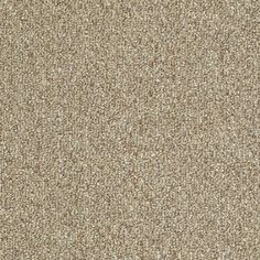 shaw home and office natural twine berber outdoor carpet buena