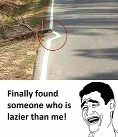 These 47 Funniest Memes Will Make You laugh out loud These 47 Funniest Memes Will Make You laugh out loud,Funny 47 Funniest Will Make You laugh out loud jokes memes hilarious pictures texts hilarious can't stop laughing Most Hilarious Memes, Extremely Funny Jokes, Short Jokes Funny, Latest Funny Jokes, Funny Jokes In Hindi, Funny School Memes, Funny Jokes To Tell, Some Funny Jokes, Crazy Funny Memes
