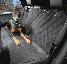 Waterproof Car Dog Seat Cover Pet Carriers Oxford Cloth Black Car Pet Seat Covers Dirt-resistant Car Back Bench Seat Covers Mat Waterproof Car Seat Covers, Back Seat Covers, Pet Car Seat Covers, Dog Car Seats, Waterproof Fabric, Bench Covers, Dog Car Accessories, Travel Accessories, Interior Accessories