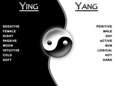 Yin Yang Best of both worlds