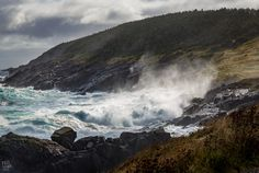 Storm surge at high tide. Awesome and quite terrifying. Newfoundland Canada, Newfoundland And Labrador, Great Big Sea, Sea Storm, Storm Surge, High Tide, Family History, The Past, Pouch