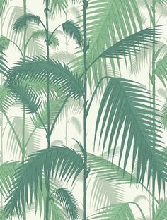 TAPET COLE & SON PALM JUNGLE , 2