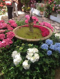 Patio de Córdoba Gardens Of The World, Andalucia, Stepping Stones, Balconies, Backyards, Porches, Outdoor Decor, Gardens, Lights