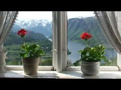 Views from Hardanger. Beautiful video filmed from the Hardangerfjord cruise in Norway