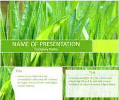 Nice PowerPoint template with green grass close-up background. Use this theme for presentations on nature, gardening, environment, etc. Company Names, Green Grass, Lorem Ipsum, Presentation, Environment, Company Profile, Templates, Nature, Education