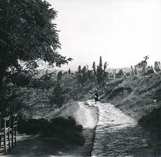 Piyerloti / 1960′lar | Eski İstanbul Fotoğrafları Arşivi Old Pictures, Old Photos, Pierre Loti, Ulsan, Istanbul Turkey, Waves, Mountains, Landscape, History
