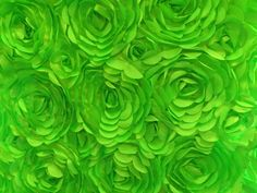 Hey, I found this really awesome Etsy listing at https://www.etsy.com/listing/155125471/satin-petal-rosette-lime-58-inch-fabric