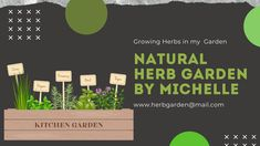 Beautiful Green Thumb Logo Blog Banner, Youtube Banners, Web Instagram, Public Profile, Growing Herbs, Natural Herbs, First Names, Marketing And Advertising, Muse
