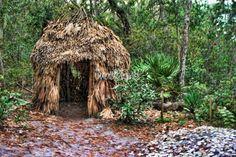 timucuan indians | Timucuan Indian hut