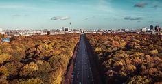 #BERLIN #SKYLINE by @030mmphotography #Tiergarten #park #urban #Fernsehturm #BrandenburgerTor #BrandenburgGate #GroßerStern #Siegessäule #GoldElse #alex #alexanderplatz #autumn #photoart #fineartphotography #photocircle #panorama #trees #autumnleaves