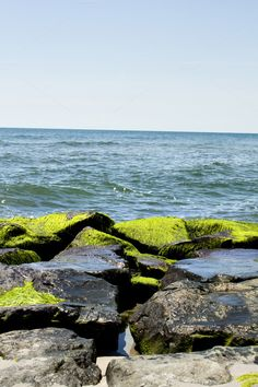 Check out Mossy Jetty Rocks & Ocean View on Creative Market