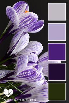 Color Palette: Fantastic Florals — Paper Heart Design Source by Scheme Color, Colour Pallette, Colour Schemes, Color Combos, Lavender Color Scheme, Design Seeds, Purple Color Palettes, Purple Palette, Purple Colors
