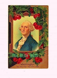 George Washington Postcard Cherry Tree
