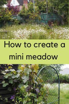 Urban Garden Design How to create a beautiful mini meadow garden Meadow Garden, Garden Cottage, Dream Garden, Wild Flower Meadow, Wild Flowers, Potager Garden, Garden Landscaping, Landscaping Melbourne, Herbs Garden