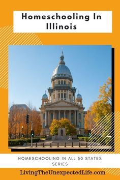 Homeschooling in Illinois Homeschooling In Illinois is an amazing opportunity for your family. Illinois is Benefits Of Homeschooling, How To Start Homeschooling, Private School, Public School, Homeschool Blogs, Arlington Heights, Local Library, Tri Cities, 50 States