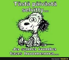Tasta paivasta selvitty... - HAUSK.in Funny Work Jokes, Work Humor, Funny Facts, Lyric Quotes, Motivational Quotes, Inspirational Quotes, Cheer Me Up, School Quotes, Disney Memes