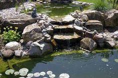 """Résultat de recherche d'images pour """"cascade jardin"""""""