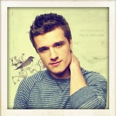 Josh Hutcherson (Peeta Mellark in the Hunger Games Movie) http://media-cache3.pinterest.com/upload/61080138666300408_ft78Aggc_f.jpg shas123 the hunger games series
