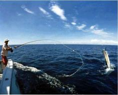 DONE: went deep sea fishing in July, 2014 in Marathon Keys, FL. We caught some tuna. Deep Sea Fishing, Gone Fishing, Fishing Boats, Fishing Tips, Places To Travel, Places To Go, Marlin Fishing, Visit Jamaica, Paradise On Earth