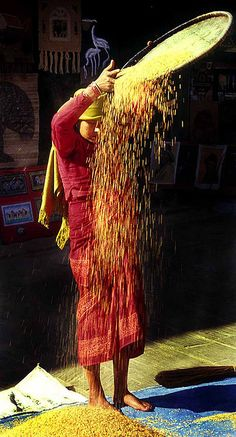 Nepal . Winnowing Rice; pinned by Anika Schmitt