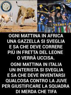 Tutti i meme sulla Juventus Gruseliger Clown, Game Of Thrones, Netflix, Pinterest Images, Juventus Fc, Romantic Movies, Me Too Meme, Ac Milan, Funny Moments