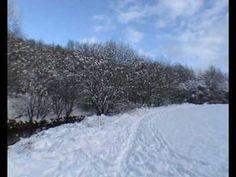 Even More Snow.wmv - By Tony Cordingley