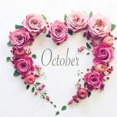 Birthday Wallpaper October 17 Ideas For 2019 Hello December Tumblr, Hello December Images, December Pictures, Hello November, Happy December, December Holidays, 12 October, Seasons Months, Months In A Year