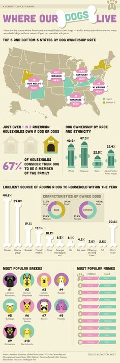 US Dog Ownership Infographic by Huffington Post