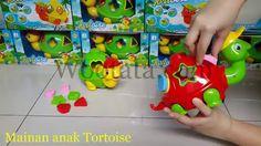 Mainan Kura Kura Terbaru Tortoise