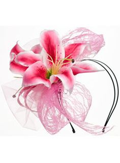 Lily Derby fascinator Derby Outfits 877945304ad