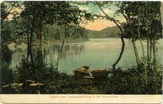 Vintage Postcard Blog: Ligar's Lake, Oswegatchie River - Adirondack Mountains - New York (1908)