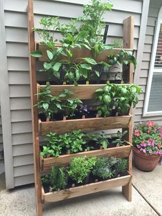 45 Creative Flower Garden Balcony Ideas The post 45 Creative Flower Garden Balcony Ideas appeared first on Gardening. 45 Creative Flower Garden Balcony Ideas The post 45 Creative Flower Garden Balcony Ideas appeared first on Gardening.