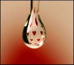 Red Hearts In Macro Water Drop.