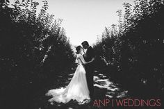 Perry Hill Orchard, Portland Wedding Photographer, bride and groom poses, posing ideas, Anne Nunn Photographers