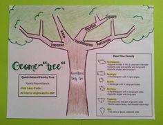 Quadrilateral Family Tree (flip book version) | Ideas for Mrs. J ...