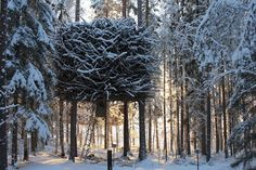 Hotel na Suécia tem quartos suspensos como casas na árvore (Foto: Divulgação)
